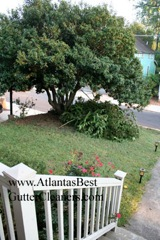 Smyrna's Best Gutter Cleaners does tree pruning of limbs coming in range of the gutters.